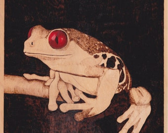 Night dwelling tree frog with red eyes hand woodburned pyrogrpahy art wall plaque