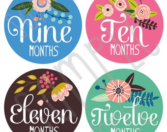 Baby Monthly Stickers- Baby Girl Monthly Stickers- Floral Baby Monthly Stickers- Artist- Milestone Stickers- Bodysuit Stickers- Set of 12