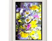 flowers, daisy, colorful photo,8''x10'', free shipping, free shipping