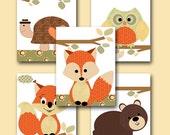 Kid Wall Art Turtle Nursery Bear Nursery Squirrel Nursery Owl Nursery Fox Nursery Baby Girl Nursery Art Baby Room Decor set of 5 11x14 orang