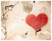 Red heart street art graffiti - urban photography