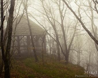Spiritual Nature Photography Hidden Temple, Asheville, NC Blue Ridge Parkway Photo PRINT, Misty Tree Art, Mountain Photography, Foggy Forest