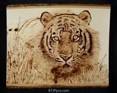 Tiger - wood burning