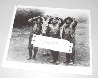 8x10 Press Photo the three stooges