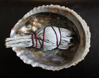 Abalone and Sage for Cleansing and Clearing the Home of Negativity, Spiritual Cleansing, Banishing, Protection