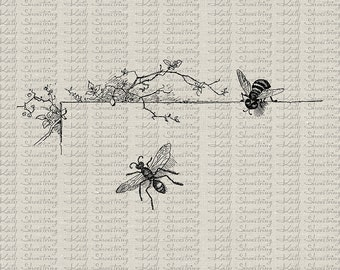 Bee And Floral Vine Vintage Illustration Bee Flowers Frame Printable Image Fabric Transfer Clip Art Collage Sheet INSTANT DOWNLOAD