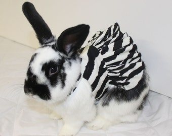 Zebra print harness dress for your bunny. Made to order. Comes with matching  leash