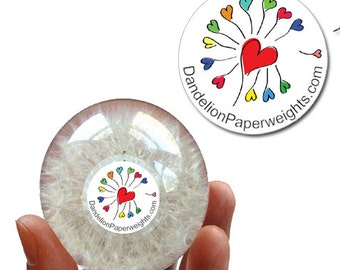 Dandelion Paperweight - Heart / Mother's Day (Limited Edition)