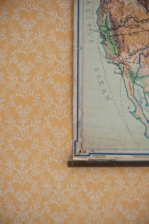 Rouleau peinture de la maison peint motifs de tapet - Rouleau de peinture a motif ...