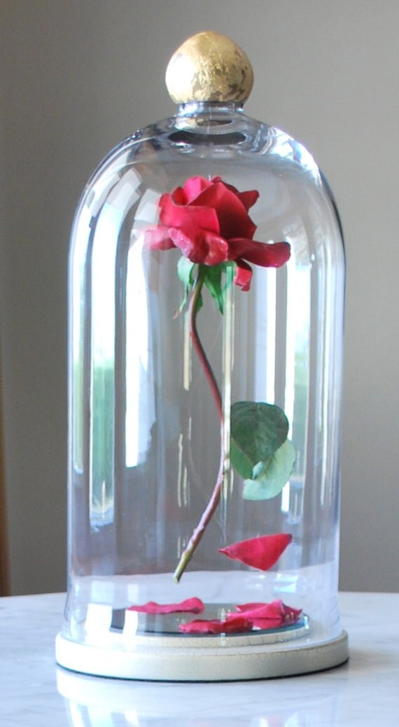 Enchanted Floating Rose Disney Fairy Tale by TheFrugalOutpost