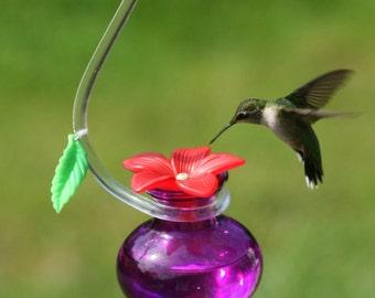 "Hummingbird feeder ""P6"""