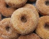Mini Vegan Cinnamon and Sugar Baked Donuts