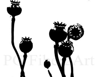 Thermofax Screen Poppy Heads