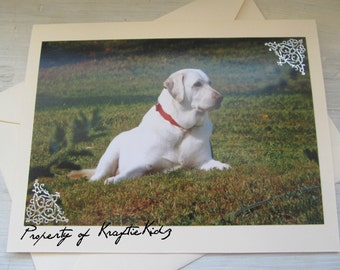 Photo Greeting Card, English Labrador, Any Occasion Card