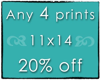 DISCOUNT SET - Any 4 Prints - FOUR 11x14 Photographs of Your Choice - Save 20%