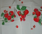 Vintage Wilendur STRAWBERRY TOWEL camp Trailer retro kitchen glamping red green