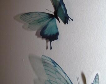 3 Luxury Amazing in Flight  Duck Egg Blue Butterflies 3D  Butterfly Wall Art