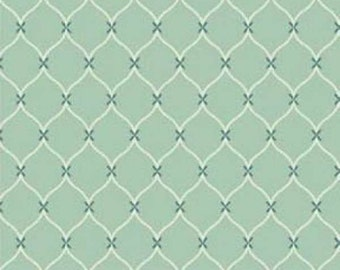 This fabric is listed as an aqua.  It tends to be more of a green.