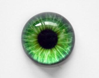25mm handmade glass eye cabochon - green eye - HEMISPHERICAL / HIGH DOME