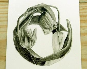 Tulip notecard