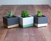 Combo Deal: Three Small Color Block Concrete Planter Set