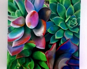 "Square Giclee of Succulent V - Gallery Wrapped - 12"" x 12""  Boxed Canvas"