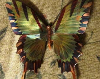 "4"" Flame painted Swallow Tail Butterfly, wall art"