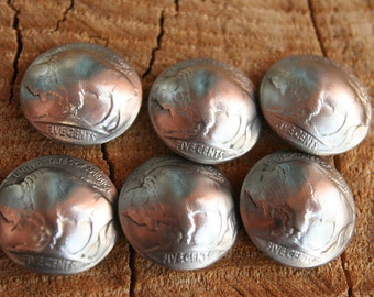 6 Old Buffalo Nickle Concho Buttons with the Buffalo side showing..