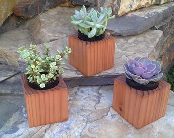 Solid Redwood Succulent Planter From Cali Planter Box Co.