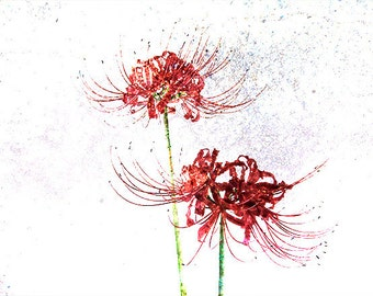 Red Spider Lily Tattoo
