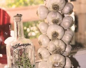 PRE-ORDER Farm Fresh Garlic Braid - 19 bulb - garlic bulbs - garlic braid bulbs