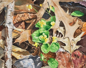 Forest Floor - Original Watercolor Painting 8 x10