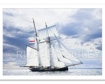 Sailing Ship Wylde Swan