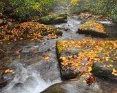 River Mist Rapids