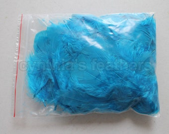 """10g (0.35Oz) turquoise 3~4"""" turkey plumage feathers 80~120 counts, for crafting, sewing, etc, SKU: 7G21"""