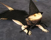 Wizarding Hat & Cape for Bearded Dragons! One size fits most, two colors.