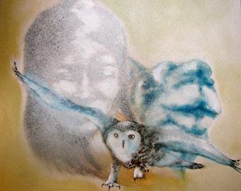 The tiny owl of Gengis Khan
