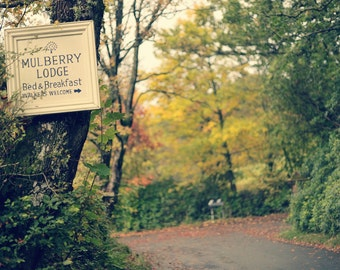 Walkers Welcome, original fine art photography, print, landscape, highland, nature, 8x12, forest, woodland, scotland, b&b, road, autumn