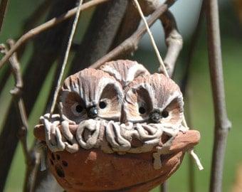 sleeping saw-whet owls ornament