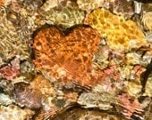 Heart Rock, Lake Rock, Anniversary or Valentine Card, Montana Lake Rocks, Nature Photograph or Greeting card