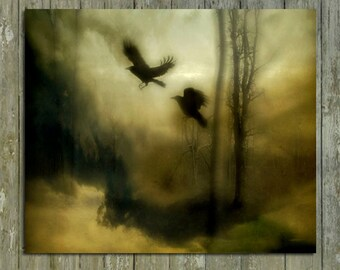 13X10 Photograph, Two Crows In Motion, Dark Colors, Gothic Ravens, Surreal, Eerie Blackbirds Flying, Forest, Woodland - Blur