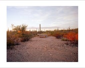 Original Fine Art Photograph / Print / Photography, Landscape, Desert, Saguaro, Road Trip, Americana, National Park Minimalist Film Sunset