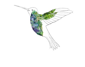Hummingbird, flowers. 8x10 print
