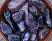 CHAROITE Deep Purple Rare Russian Tumbled Gemstone in Gift Bag