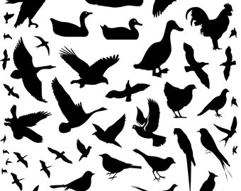 Silhouette Collection Of Bird Animals Vinyl Wall Decals Kids Home Decor Stickers Seagull Parrot Pelican Eagle