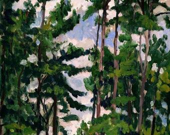 Tall Pines at Tanglewood. 9x12 Oil Painting, Berkshires Landscape, Plein Air Impressionist Artwork, Signed Original Realist Fine Art