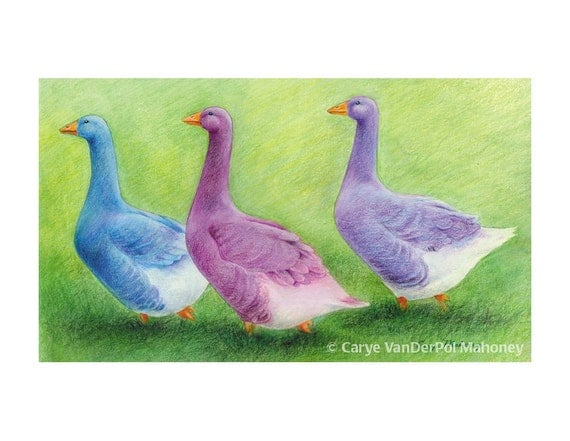 """Three colourful geese in purple, blue, and magenta waddle in a line; farm animals, rustic - Art Reproduction (Print) -  """"Follow the Leader"""""""