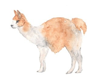 Watercolor painting, llama, watercolor llama painting, alpaca, watercolor animals, llama art, llama gifts, 10X8 print