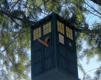 Time And Relative Dimension In Space Birdhouse. Is it bigger on the inside?