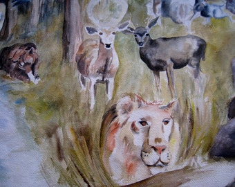 Original WaterColor by Ruth Rush  depicting wild animals in natural setting